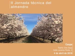 jornada-tecnica-almendra300